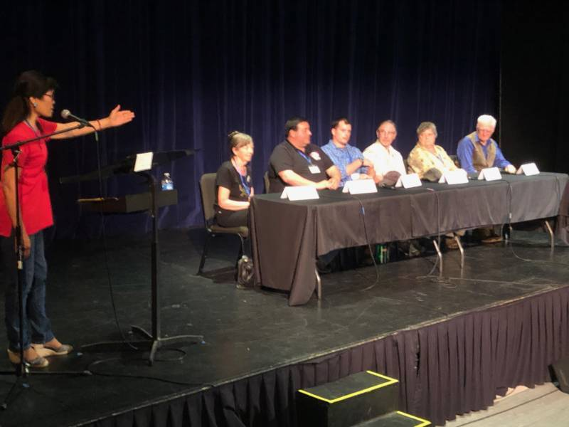 Panelists with expertise in fire recovery at the 'Wilder than Wild' screening answer questions form the audience.