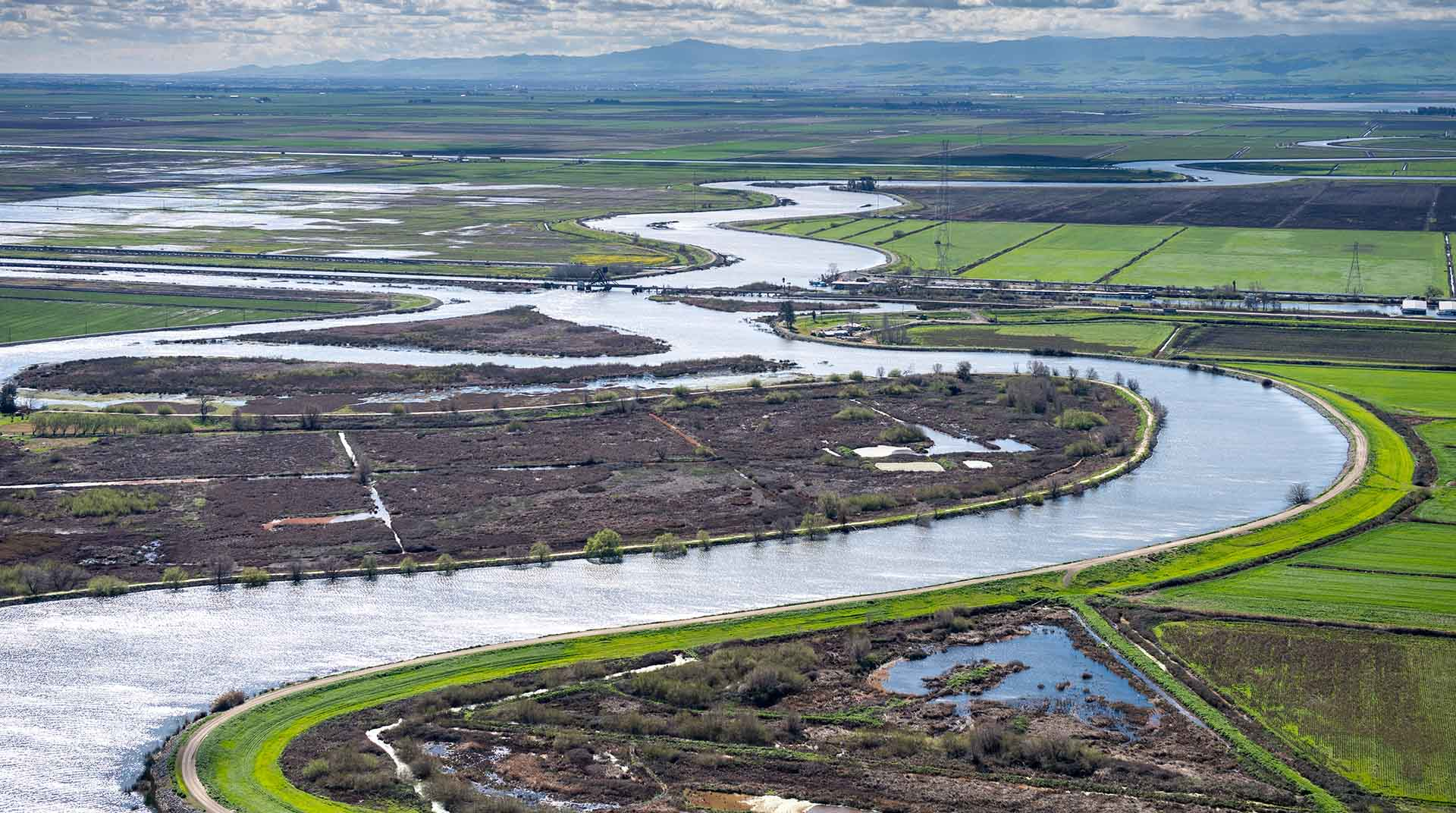 Administration Sidelines Federal Biologists Who Could Stand in Way of More Water for Calif. Farmers