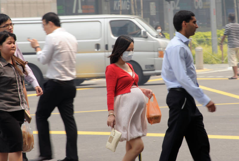 Pregnant Moms Who Breathe Dirty Air Have Children With Lower IQs, Study Finds