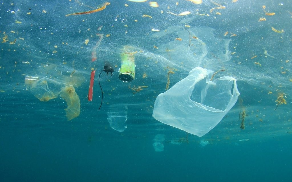 A Toxic Soup: The Great Pacific Garbage Patch