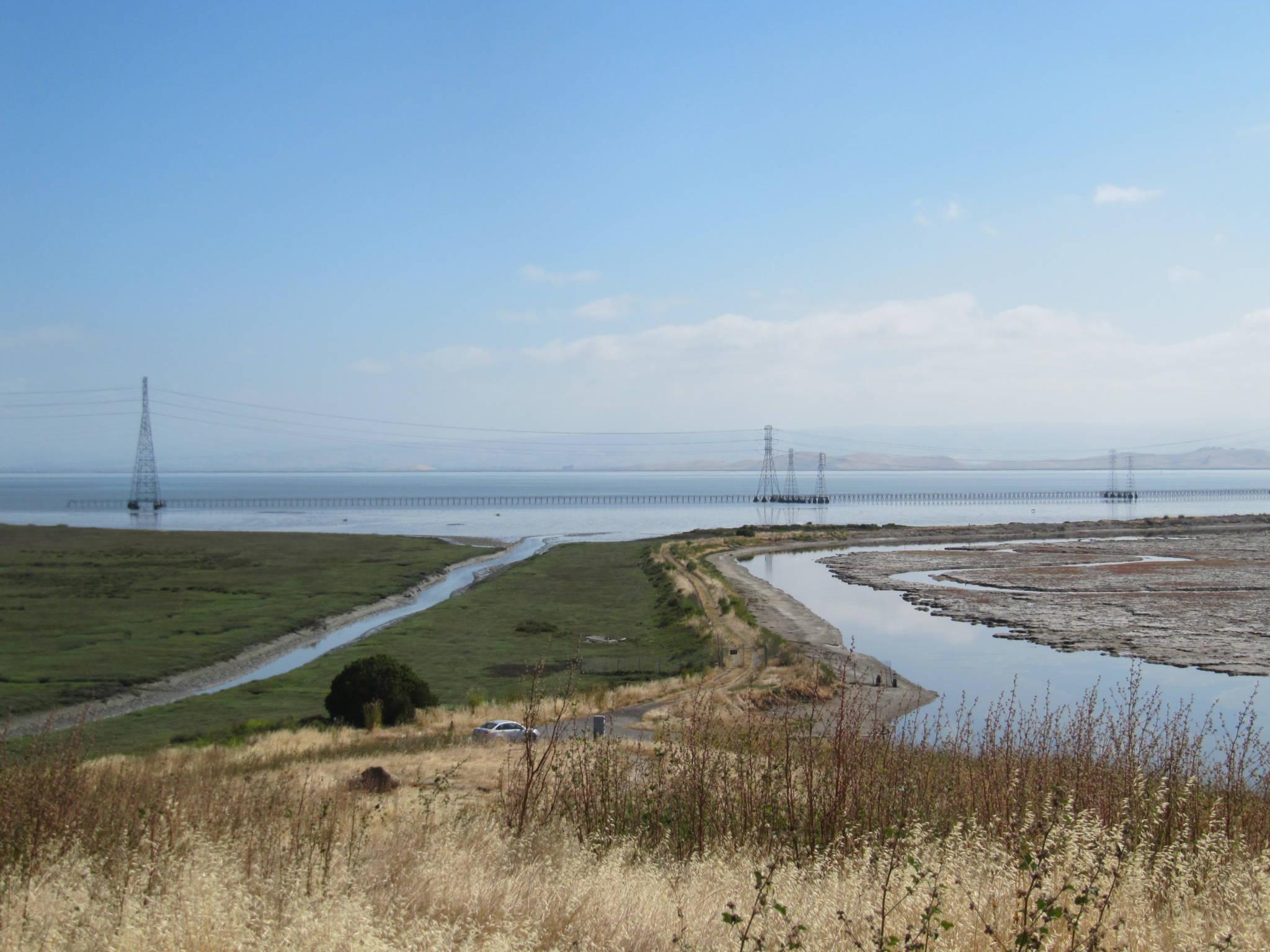 Want to Prevent California's Katrina? Grow a Marsh