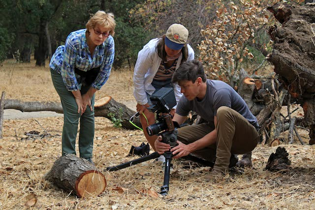Santa Clara University professor of biology Janice Edgerly-Rooks and Deep Look producer Jenny Oh watch director of photography Josh Cassidy film webspinner silk at Guadalupe Oak Grove Park, San Jose, CA.