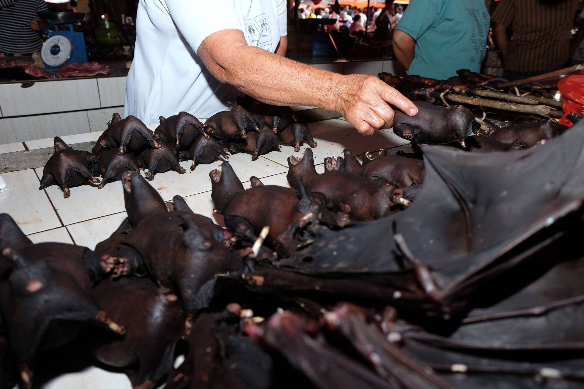 A vendor selling bats at the Tomohon Extreme Meat market on Sulawesi island, Indonesia, on Feb. 8, 2020. RONNY ADOLOF BUOL/AFP via Getty Images