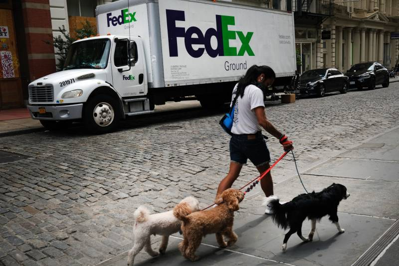 A young woman with black hair in a ponytail walks three fluffy dogs on the sidewalk, across a cobbled street from a large FedEx truck. The photo is from New York City, September, 2020. The move from retail stores to online shopping has only grown during the COVID-19 pandemic, when many physical stores have closed.