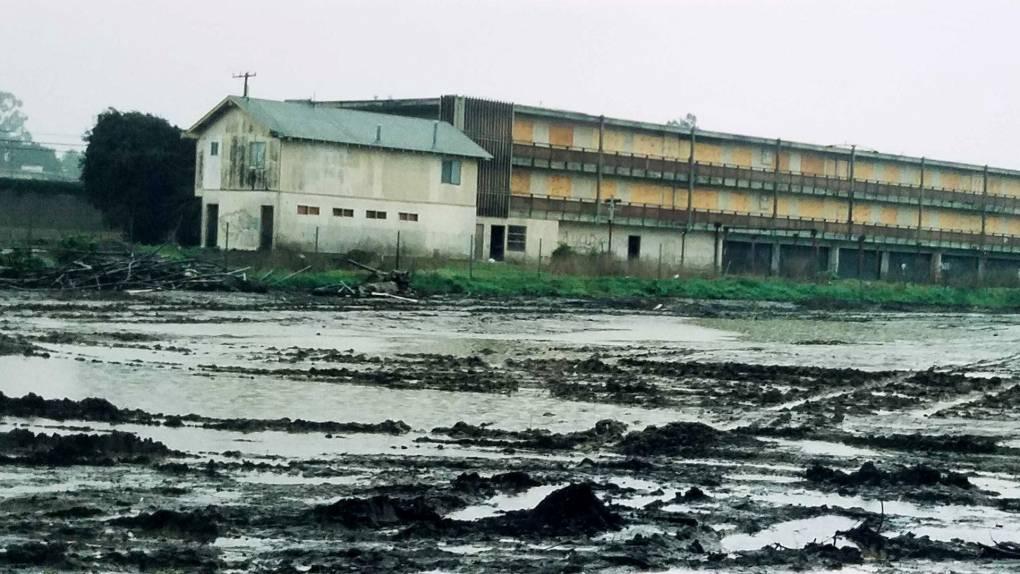 Varias partes del Este de Palo Alto se inundaron en 1998.