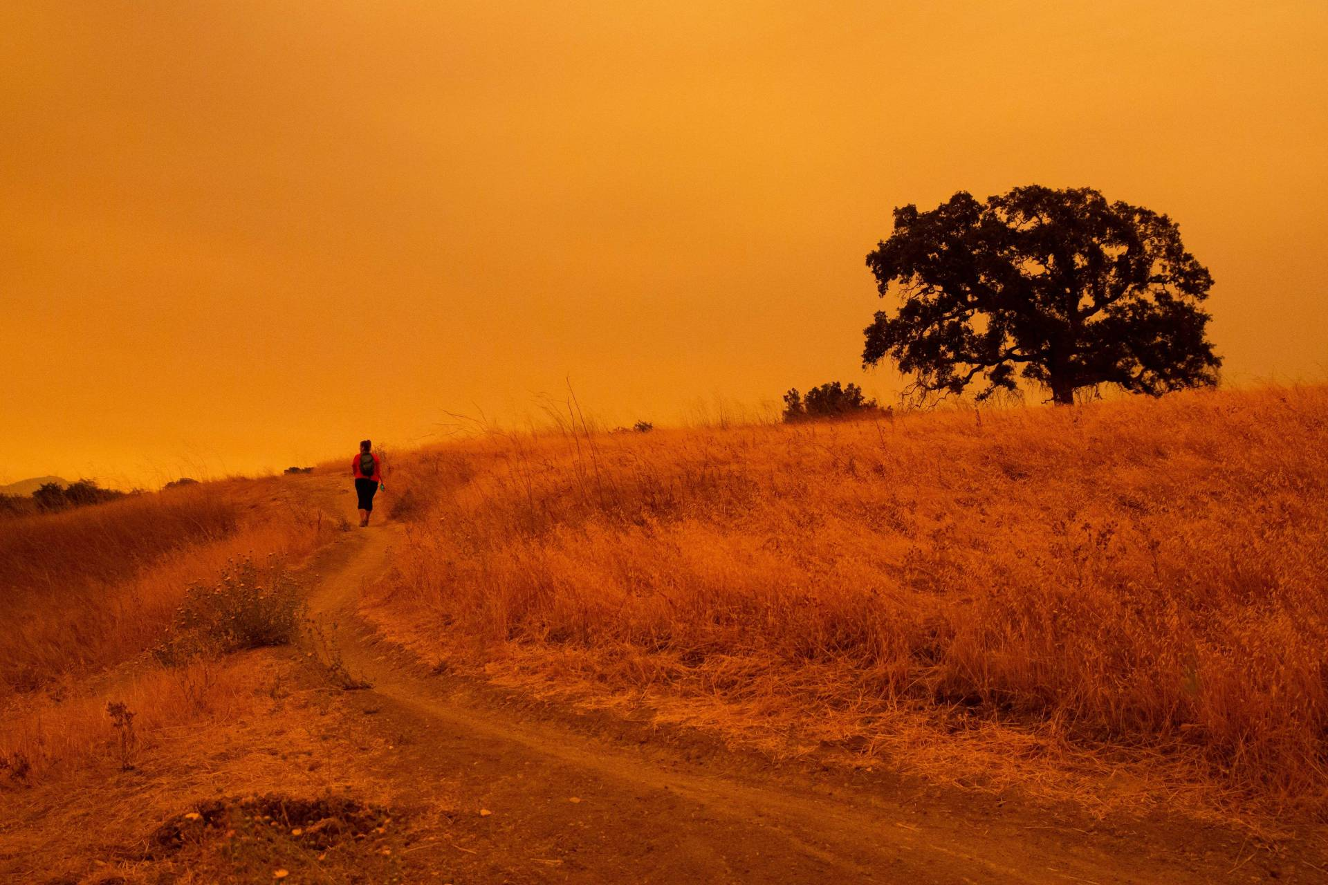 A hiker walks below an orange sky filled with wildfire smoke on the Limeridge Open Space hiking trails in Concord, California on September 9, 2020. Dangerous dry winds whipped up California's record-breaking wildfires and ignited new blazes, as hundreds were evacuated by helicopter. Brittany Hosea-Small/AFP/Getty Images