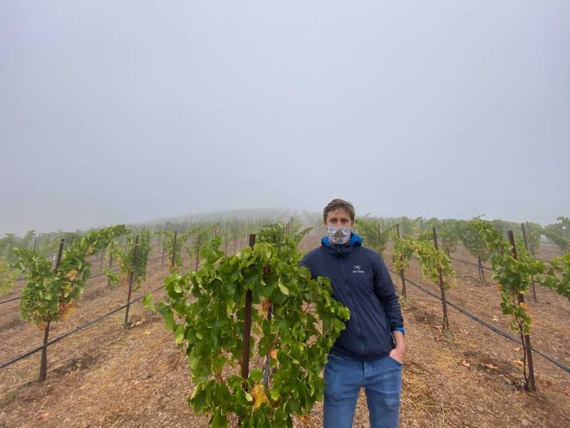 Hamel Family Wines doesn't use any water on 80% of it's 100 acres.