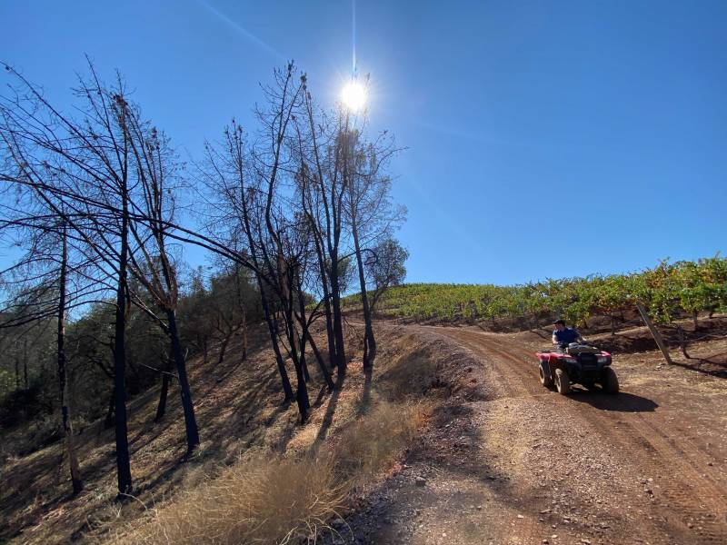 A fire circled two vineyards at Green and Red Vineyards in Napa County the summer of 2020.