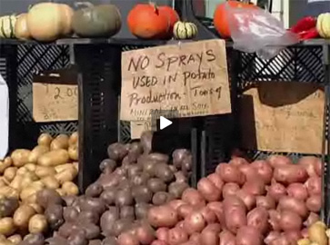 potatoes for sale