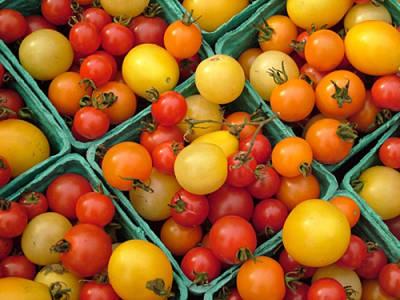 jc1767 montpelier vt vermont farmers market tomatoes