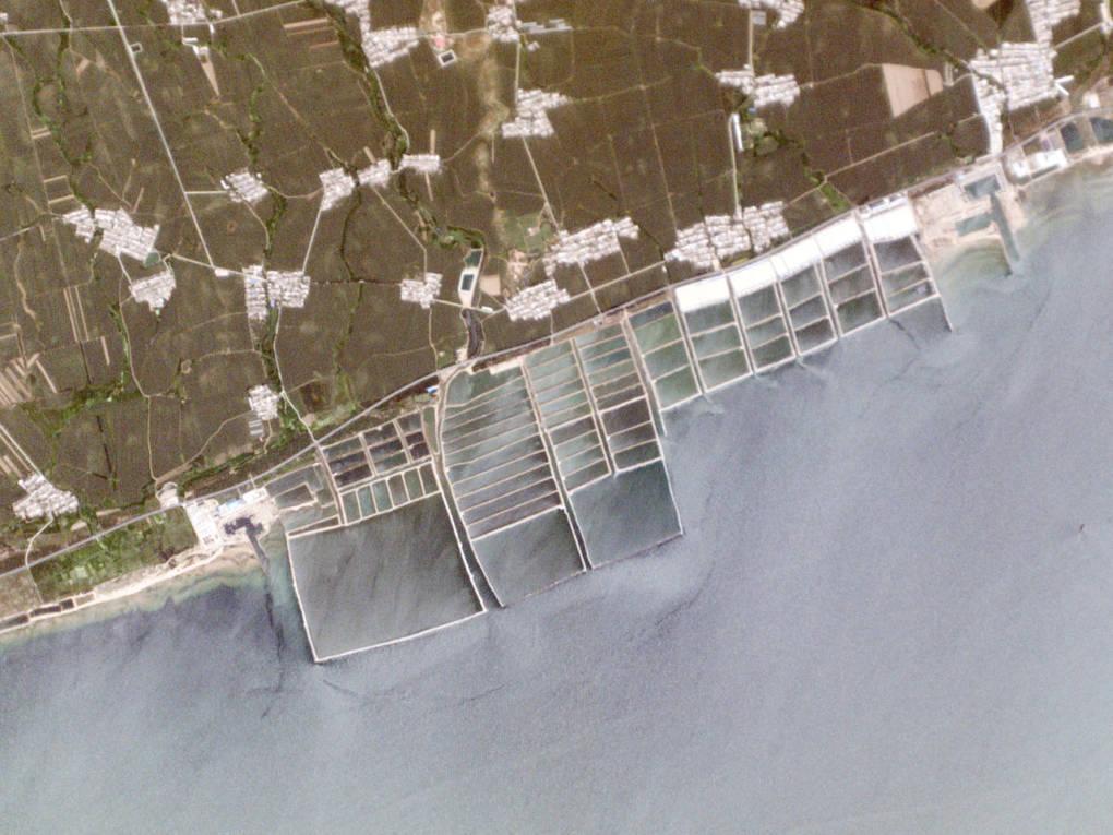 Aquaculture ponds along the coast of China's Bohai Sea.