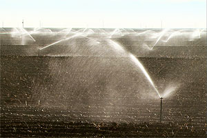 Producer's Notes: California's Water Future