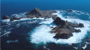 "Producer's Notes: The Farallon Islands—""California's Galapagos"""