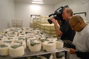 QUEST Producer Sheraz Sadiq looks at the video monitor as cameraman Blake McHugh films racks of St. Pat cheese at the Cowgirl Creamery plant in Petaluma.