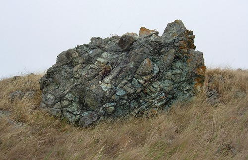 ring mountain serpentinite
