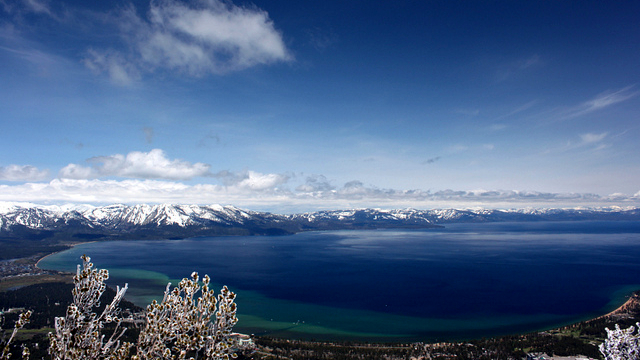 Rumors and Truth in Lake Tahoe