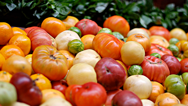 Tomatoes Heirlooms Vs Hybrids Kqed