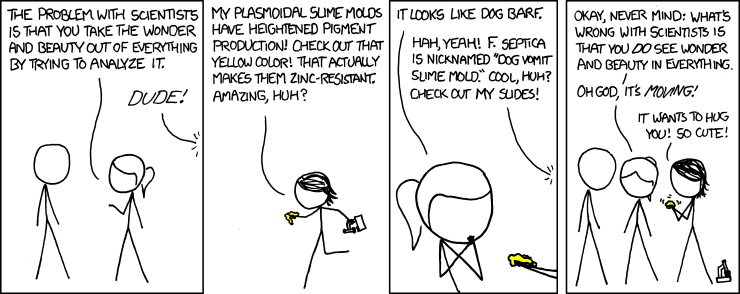 xkcd comic about slime molds