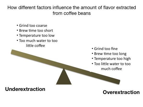 Factors influencing coffee flavor