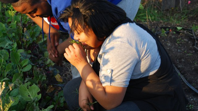 Mariah Mitchell and Isaac Hanson work in a community garden as part of the weight management program at Children's Hospital Oakland.