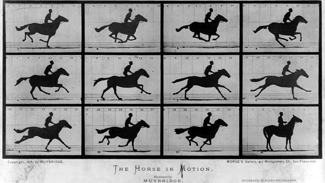 The Horse in Motion - Eadward Muybridge