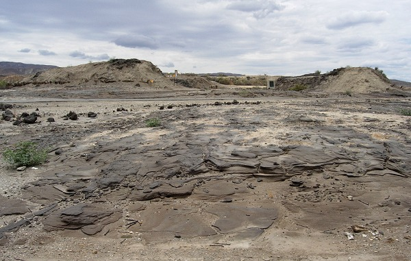 Site of the Lakeview gusher north of Maricopa. A hundred years later, the ground is still paved with asphalt.