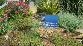 Bay-Friendly Gardening: Welcoming Wildlife and Nature Into Human Habitats