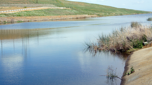 A canal in the south Delta, sending water to the Central Valley Project.
