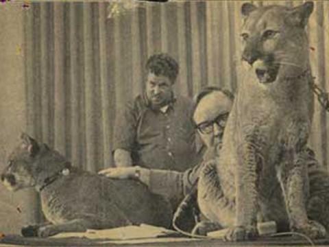 john dunlap with lions