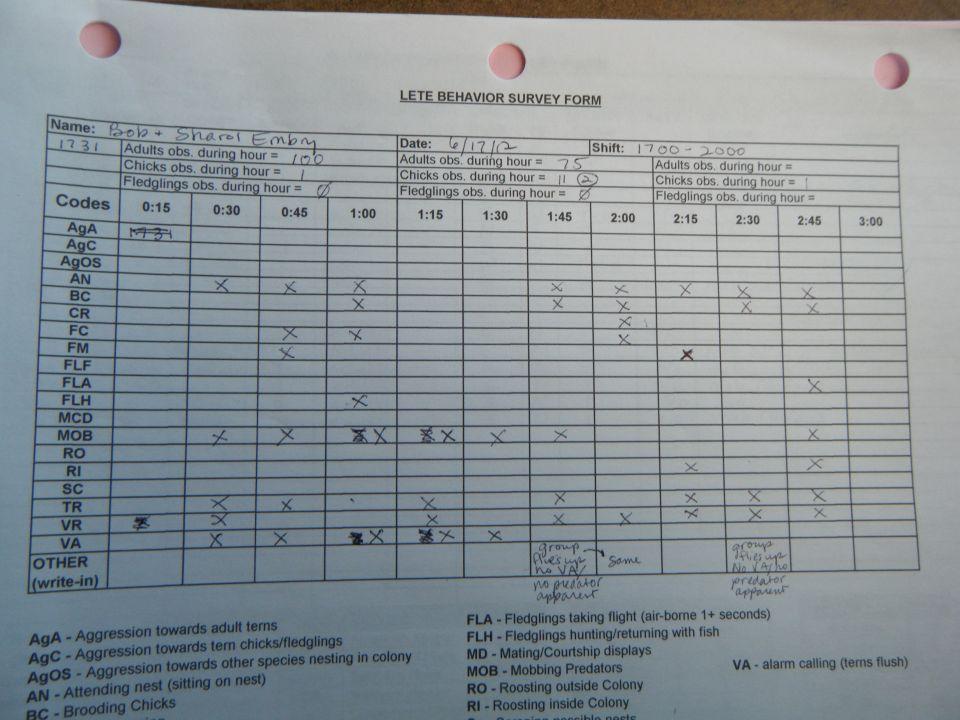 Least Tern Behavior Monitoring Form