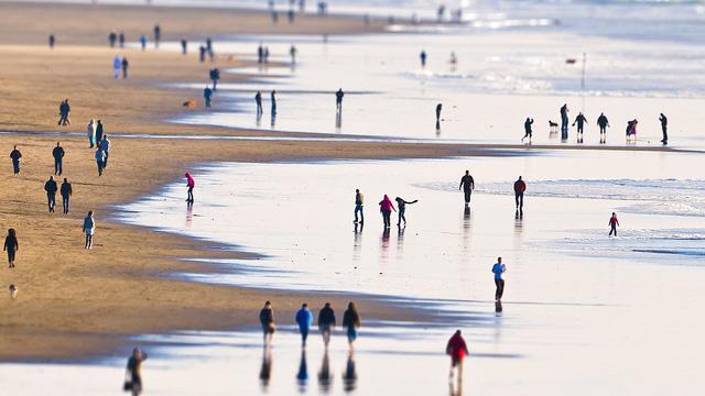 Plan an Ocean-Friendly Staycation