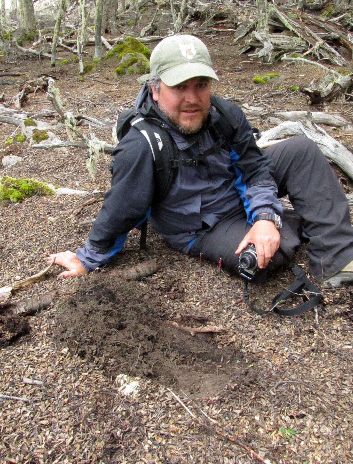 Lion scrape in Patagonia