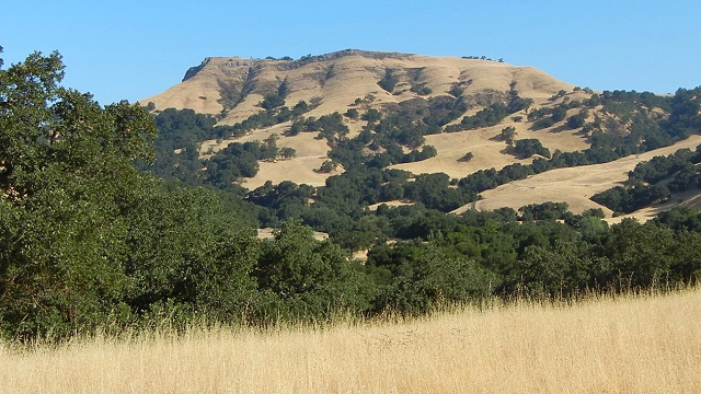 Flag Hill, made up of fossiliferous sandstone of the Briones Formation, overlooks the Sunol Regional Wilderness. Photos by Andrew Alden