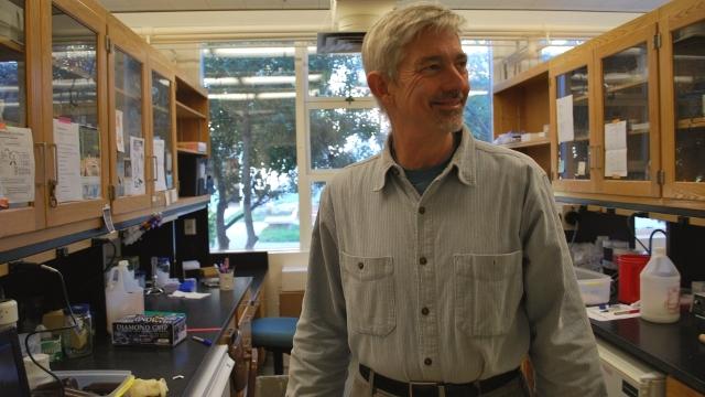 Why I Do Science: Stephen Palumbi