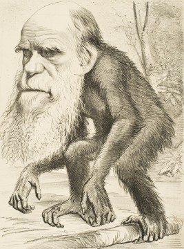 Darwin as ape