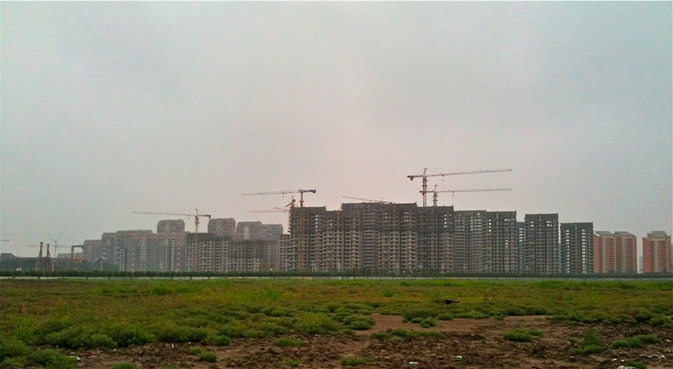 China Tries Greening from the Ground Up