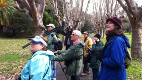Birdwatching for Science (and Fun!)