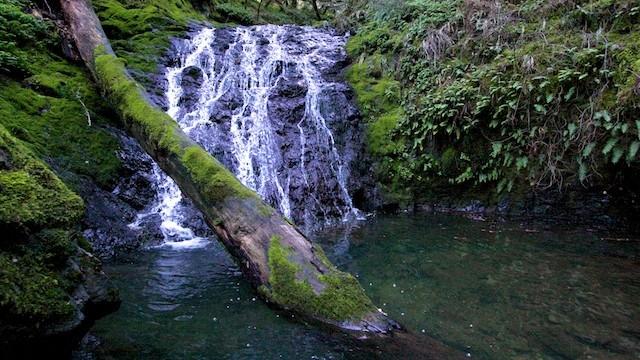 Cataract Creek Trail Waterfall