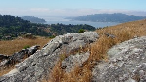 Ring Mountain, in Marin County, is as beautiful as it is geological. Photos by Andrew Alden