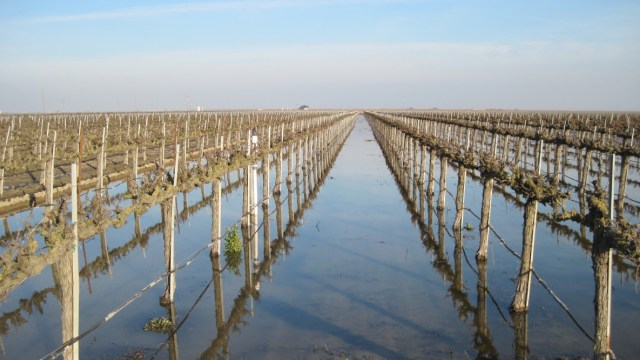 How Flooding Fields Could Alleviate Water Supply Stress