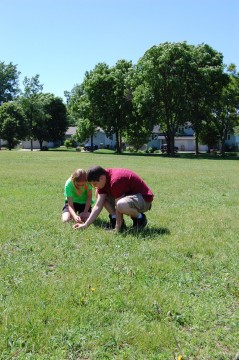 Badger Rock students comb through the park for different plant species.