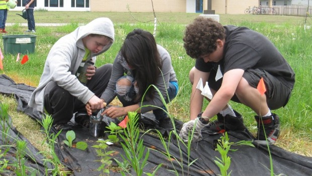 Badger Rock Middle School students planting their prairie with native species to improve biodiversity and water filtration. Photo courtesy of Sarah Krauskopf.