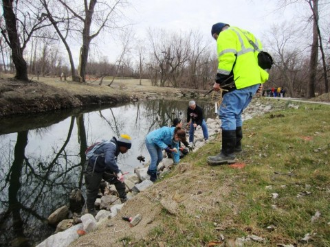 Volunteers lend a hand to stabilize the streambank and  restore Euclid Creek's damaged wetlands.