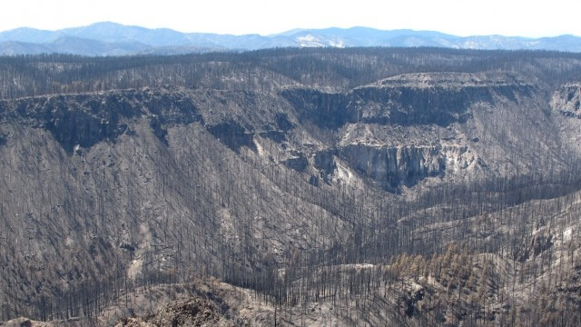 The effects of the Las Conchas Fire in the Jemez Mountains in New Mexico in 2011. (Photo by Craig D. Allen, USGS)