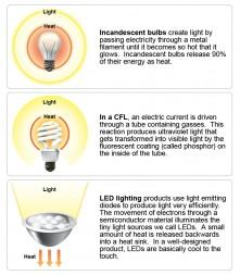 Bulb comparison2