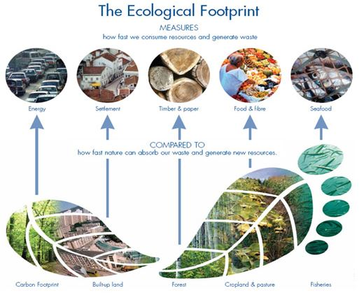 Tracking Your Ecological Footprint | QUEST | KQED Science