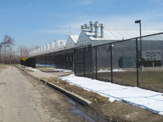 Green City Growers pioneers large-scale hydroponic technology and replaces vacant land in a troubled Cleveland neighborhood.