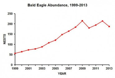 This graph illustrates the growth in the estimated number of bald eagle nesting pairs in Ohio in the past fourteen years. Credit: ODNR