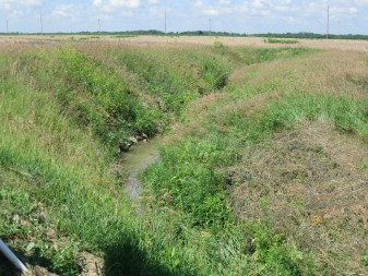 "Many farms rely on ""tile drainage,"" a series of underground pipes that drain water from the field into a ditch, as shown above. Nutrient runoff into these ditches feed toxic algae blooms downstream."