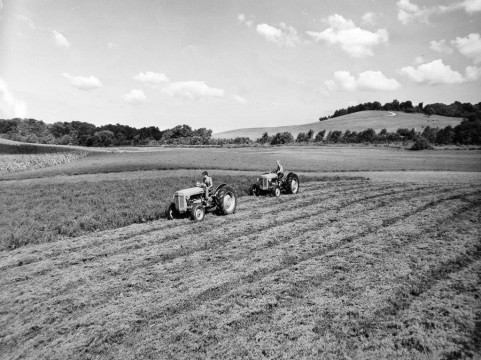 Louis Bromfield planted his fields in several kinds of grasses, and practiced contour farming. Credit: Malabar Farm Archives